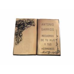 Libro de bronce